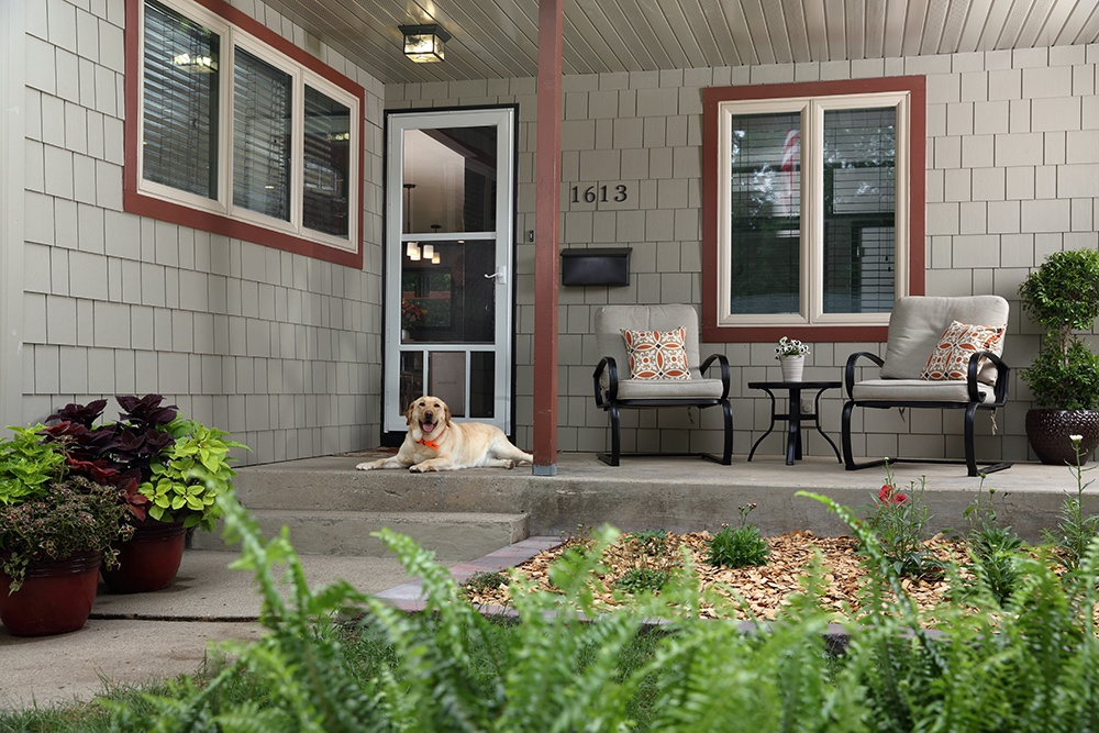 dog on porch of house